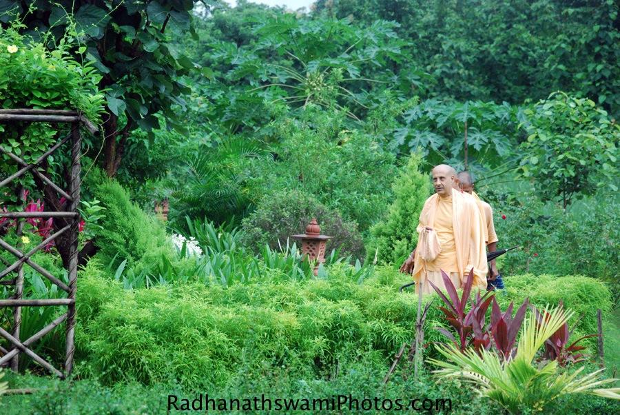 Radhanath Swami at Wada Farm, India