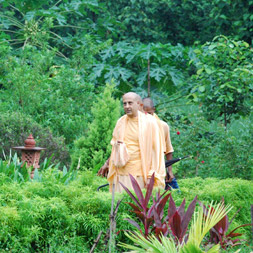 Radhanath Swami at Wada Farm