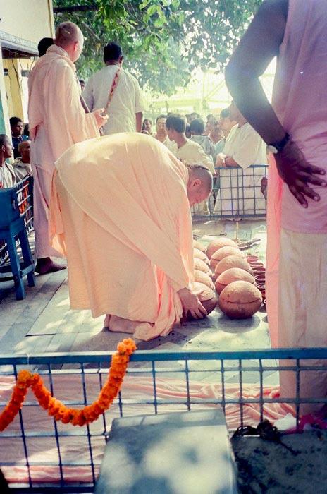 Swami Radhanath
