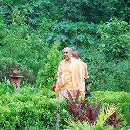 Radhanath Swami at Wada Farm