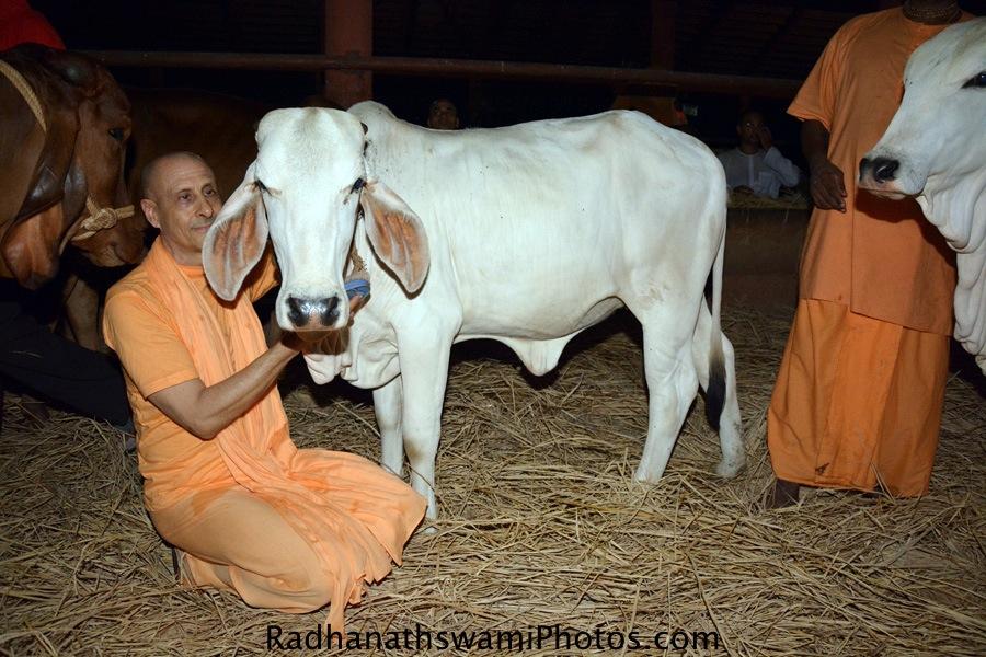 Radhanath Swami at GEV