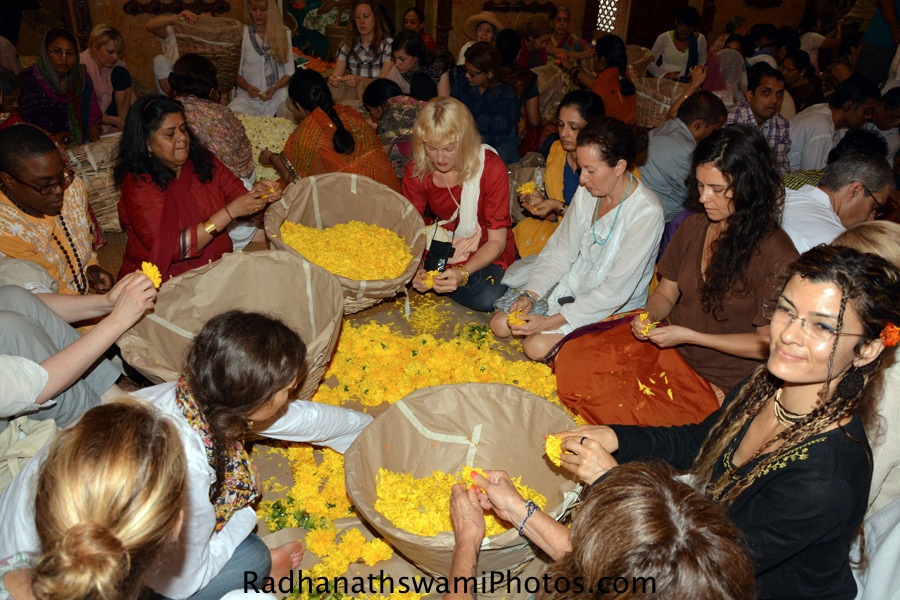 Devotees plucking flowers at ISKCON Chowpatty