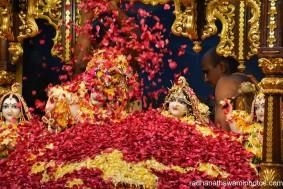Flower abhishek for the dieties - Radhanath Swami