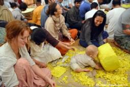 Devotees plucking flowers for pushya abhishek