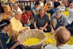 Radhanath Swami plucking flower