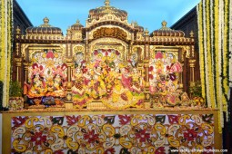 Sri Sri RadhaGopinathji after abhishek with flower petals